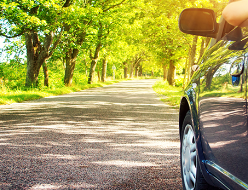 What Does Auto Insurance Cost?